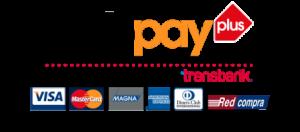Miami Rental Webpay plus medios de pago